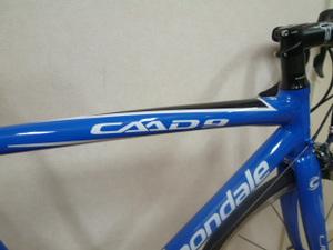Caad93_2